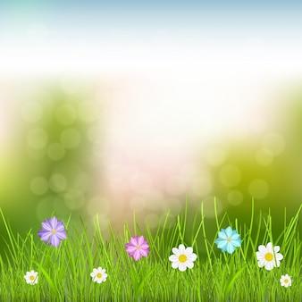 空、緑の草、色とりどりの花と自然な背景