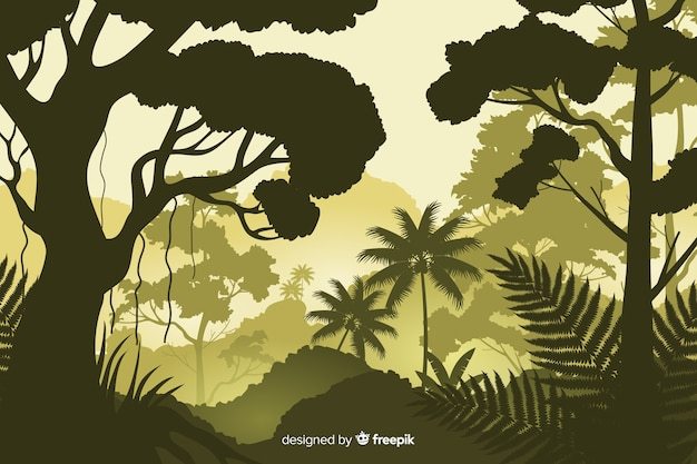 Natural background with tropical forest landscape