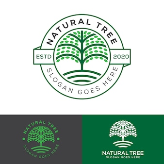 Natural farm tree badge logo, plant education logo vector template