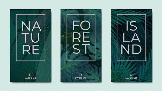 Natural foliage instagram stories template