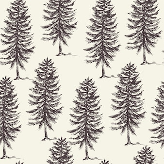 Natural forest seamless pattern of evegreen trees