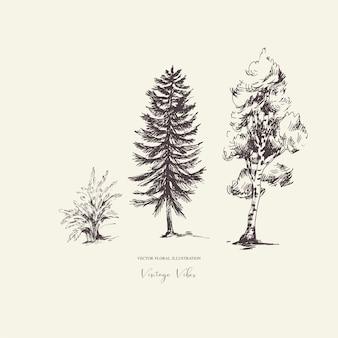 Evegreen 나무의 자연 숲 세트