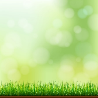 Natural green grass background with focus and bokeh