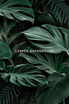 Natural green leaves background template