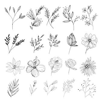 Коллекция природных листьев и цветов дикого искусства в стиле арт-линии
