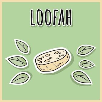 Natural material loofah sponge