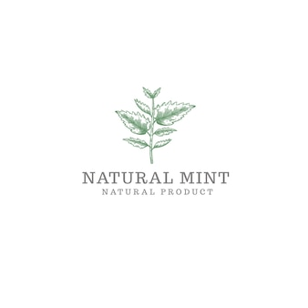 白で隔離される自然なミントのロゴ