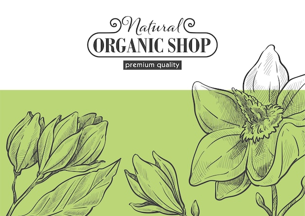Natural and organic shop, eco market with products and safe ingredients. premium quality of production. flowers in bloom and simple floral design. monochrome sketch outline, vector in flat style