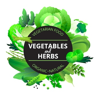 Natural organic vegetables and herbs rounded with cabbage courgette celery and pea green abstract vector illustration