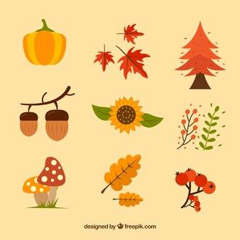 가을 요소의 자연 팩