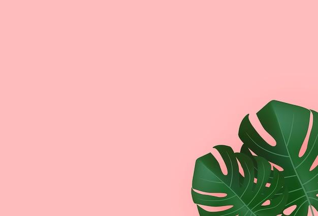 자연 현실적인 녹색 열대 몬스 테라 잎