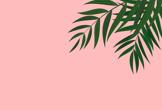 自然でリアルな緑の熱帯のヤシの葉