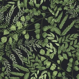 黒の背景にシダと緑の草本植物と自然なシームレスパターン