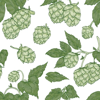 Natural seamless pattern with hop flowers on white background