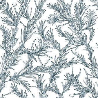 Естественный бесшовный образец с растениями и цветами розмарина наброски.
