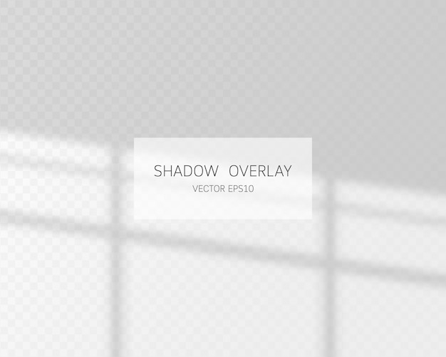Natural shadows from window isolated on transparent background