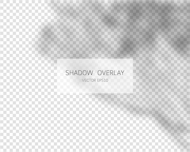 透明な背景に分離された自然な影