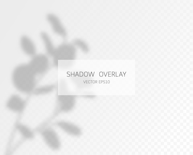 Natural shadows isolated on transparent background