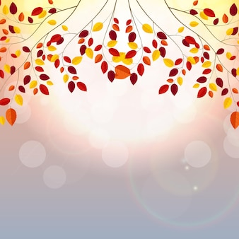 Natural sunny autumn leaves background vector illustration