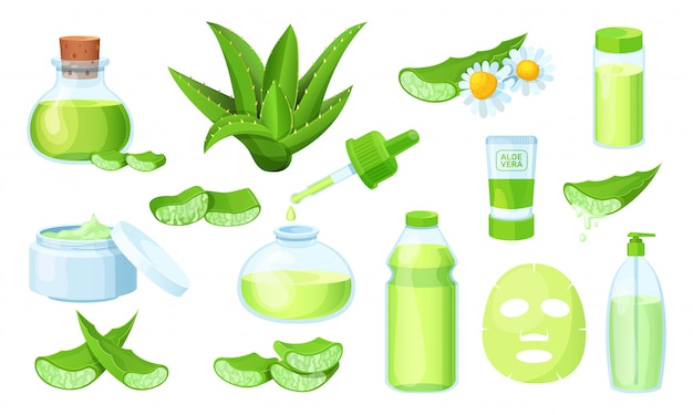 Nature aloe vera medicinal pharmacy, cosmetic plant leaves, fresh juice on natural herbal isolated on white.