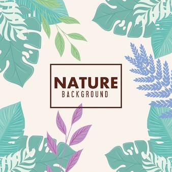 Природа фон, рамка тропической природы с ветвями и листьями пастельного цвета