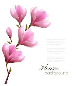 ピンクの花の花の枝と自然の背景。ベクター