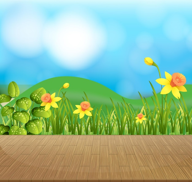 Nature background with flower field and green grass