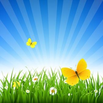 그라디언트 메쉬 일러스트와 함께 잔디와 꽃 자연 배경