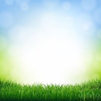Nature background with grass border illustration