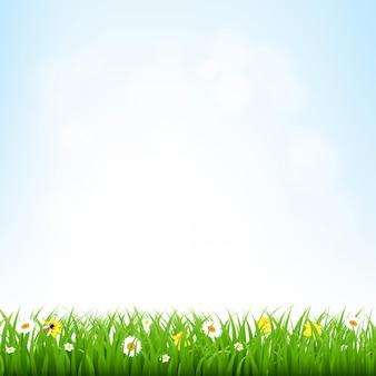 グラデーションメッシュイラストと草の境界線と自然の背景