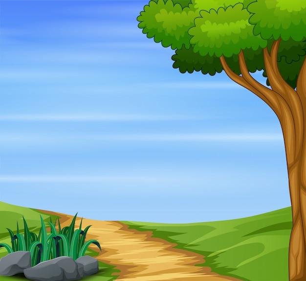 パス道路と大きな木の自然の背景