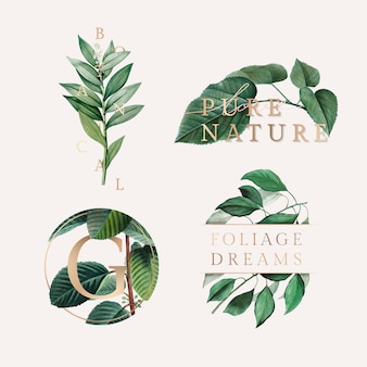 Nature foliage wallpaper