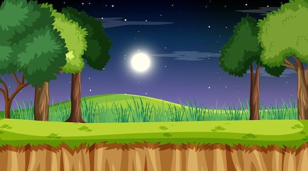 밤 장면에서 자연 숲 풍경