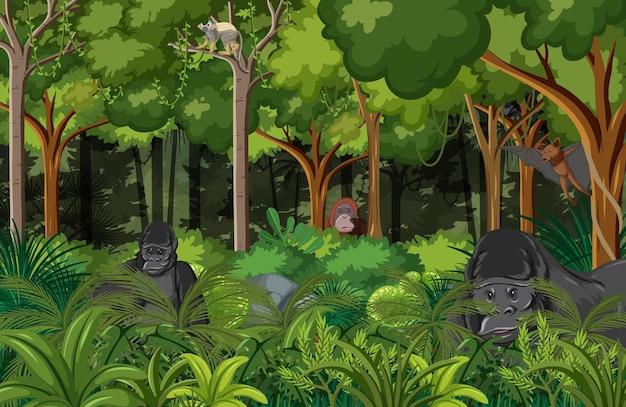 고릴라와 자연 숲 풍경 배경