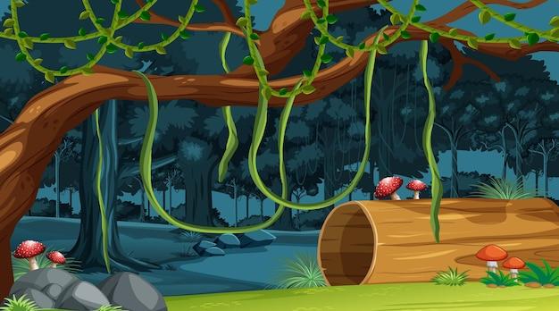 自然林の風景の背景