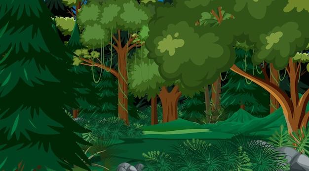 자연 숲 풍경 배경