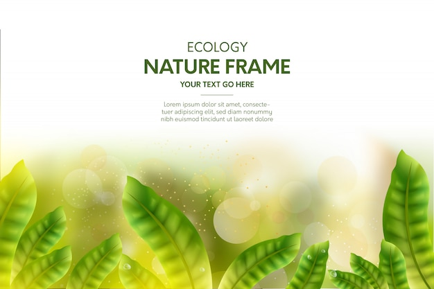 Nature  frame background with realistic leaves