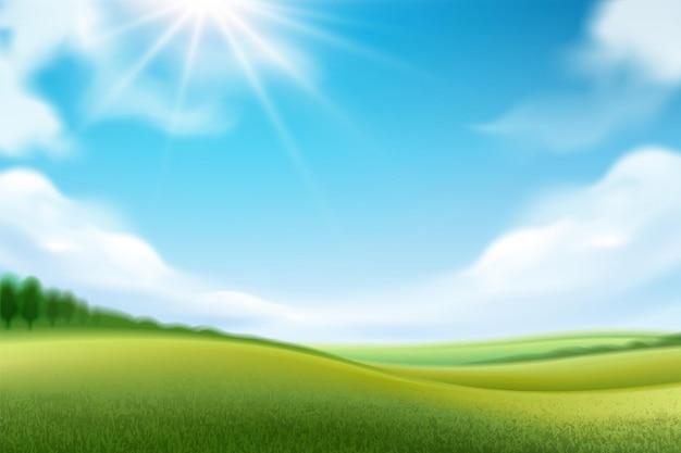 Природа пейзаж или панорама луга