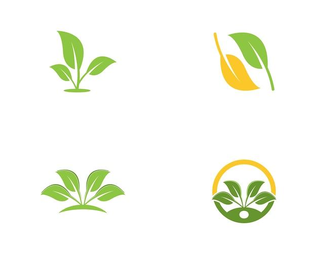 자연 잎 로고 템플릿