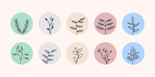 Природа оставляет коллекцию логотипов с концепцией минимализма premium векторы