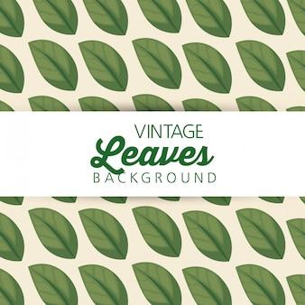 Nature leaves plants pattern