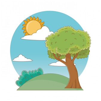 Nature outdoor tree environment cartoon