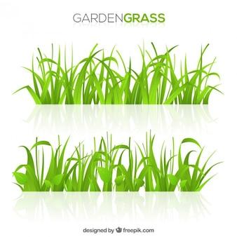 緑の庭の草の自然パック