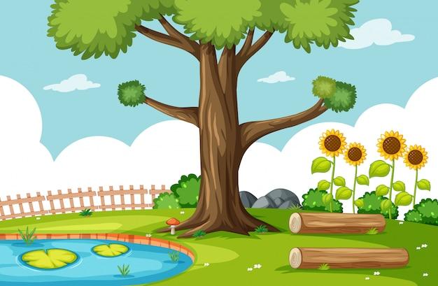 沼とひまわりのシーンのある自然公園のシーン