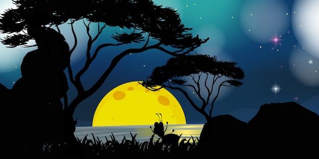 夜の自然シーン