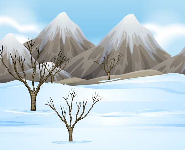 Nature scene background with snow on the ground
