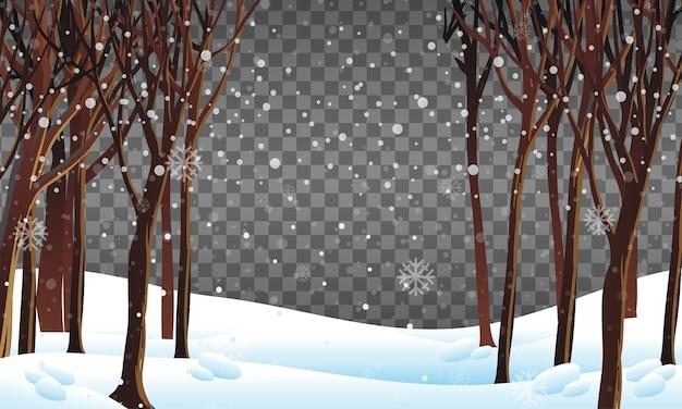 투명 배경으로 겨울 시즌 테마의 자연 장면