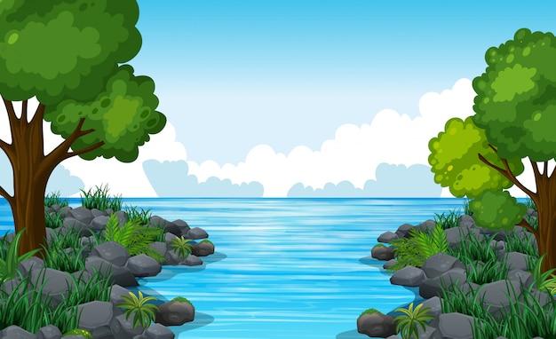 많은 나무와 강의 자연 장면