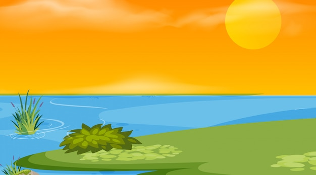 A nature scene sunset