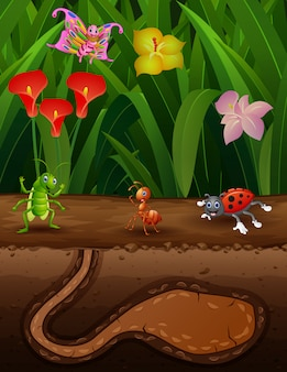 Nature scene with an anthill and some insects